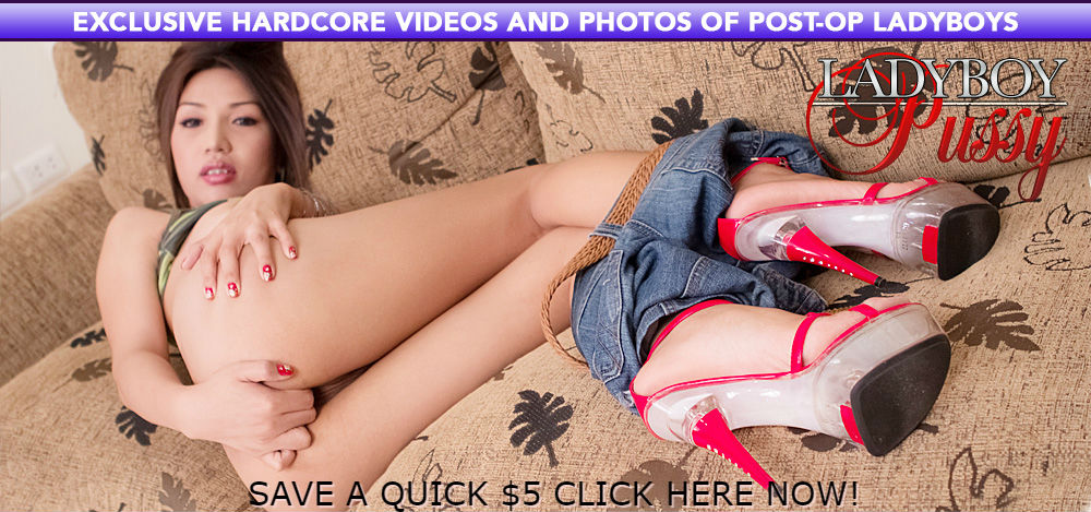 Get Ladyboy Pussy Now And Save An Easy $5!
